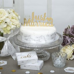 Cake Topper - Just Married - Scripted Marble